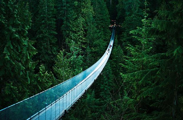 Ponte Suspensa Capilano em Vancouver