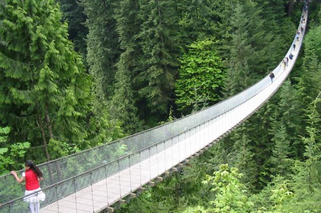 Passeio para a Ponte Capilano em Vancouver