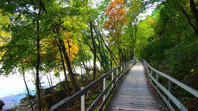 White Water Walk em Niagara Falls
